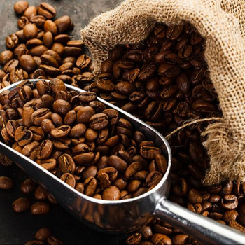 Arabica and Robusta Coffee Beans from Africa