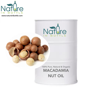 Macadamia Nut Oil | Macadamia Oil | Macadamia integrifolia - 100% Pure and Natural Essential Oils - Wholesale Bulk Price