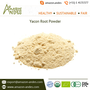 Yacon Fruit Extract Powder for Health & Medical