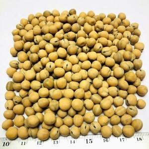 Peas Yellow High Quality from Ukraine