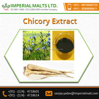 High Solubility and Optimal Absorption Chicory Extract for Health Benefits