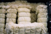 Natural raw sisal fiber / sisal fibre/bamboo fiber for supply
