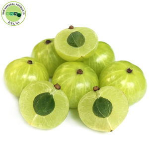 Wholesale High Quality 100% Pure Amla Oil