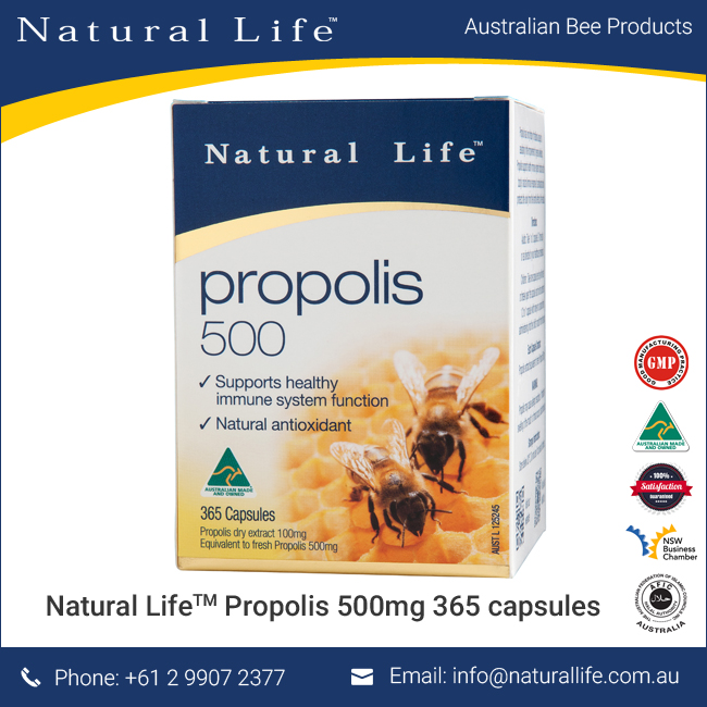 Bee Propolis 500 Mg. 365 Tablets - Food Supplement