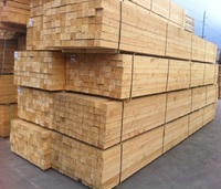 quality pine/poplar wood/timber/lumber for sale