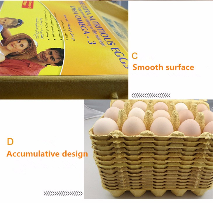 Newest style Quail egg packaging carton