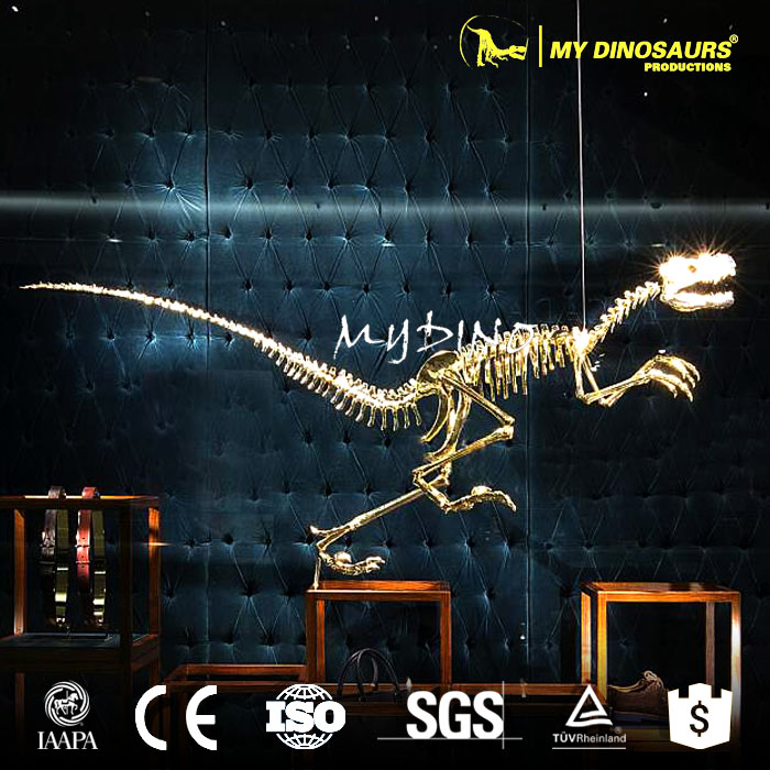 MY Dino-J287 Customization Production Showcase Decoration Golden Dinosaur Skeleton