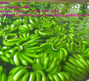 FRESH CAVENDISH BANANA Vietnam 2018 for sale sell supplier (Ivy Nguyen  +84977157110)