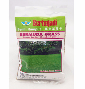 Special Coated Bermuda Grass Seeds