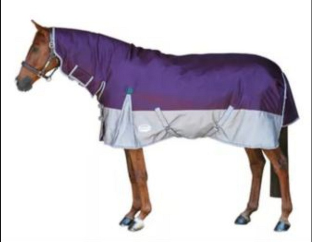 High Quality Horse Turnout Rugs