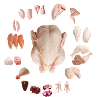 Frozen Quality Frozen Brazil Halal chicken Meat / Fresh / Frozen / Processed Chicken Feet / Paws / Claws Cheap