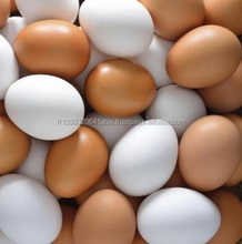 Quality Fresh Table Chicken Eggs ( Brown and White)cheap sale