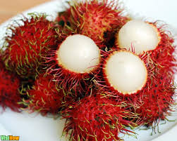 Canned Rambutan In Light Syrup from Vietnam