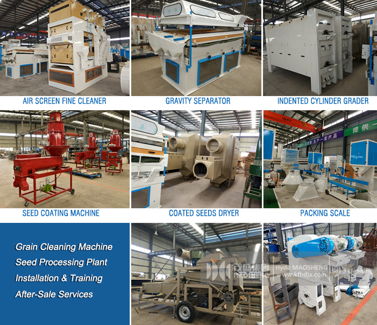 Buller Model Compound Hemp Processing Machine Gravity Cleaner Bean Cleaning Machine Large Capacity Buckwheat Cleaning Machine