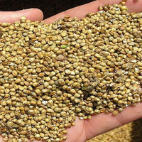 New crop red /white /yellow millet for bird seed from South Africa