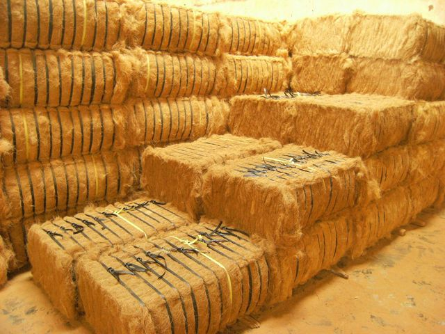 Best Price High Quality Coconut Fiber / Coir