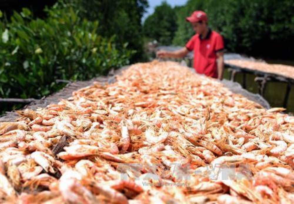 CRAB, SHRIMP SHELL POWDER FOR ANIMAL FEED BEST QUALITY// Stacey +84 908584207