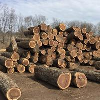 North American wood Black Walnut for pallets