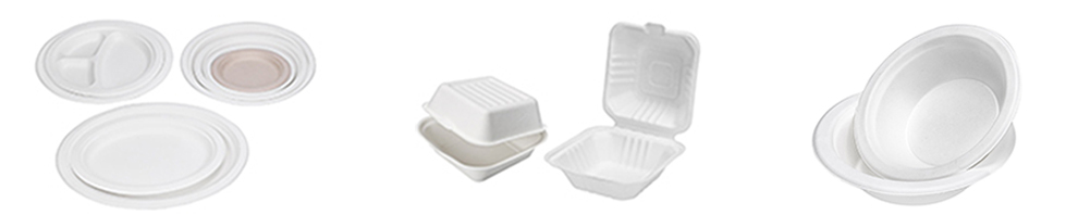 To Go Food Box Disposable Sugarcane Bagasse Food Clamshell Boxes