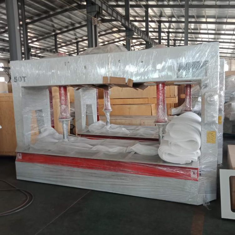 50T हाइड्रोलिक ठंड प्रेस/पेंच प्रेस मशीन