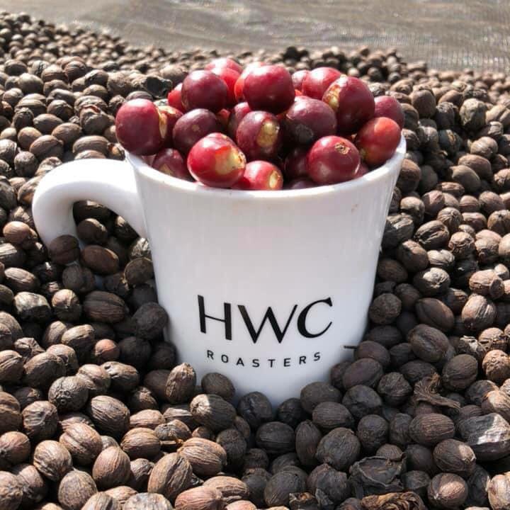 Ethiopia Yirgacheffe Washed Process Green Coffee Bean