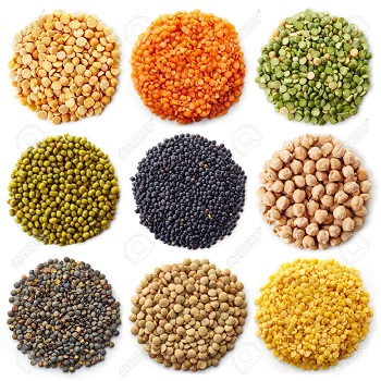 New Product Quality Red Lentils/Green Lentils/ Yellow Lentils