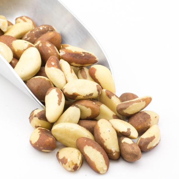 Brazil Nut / Manufacturer/supplier