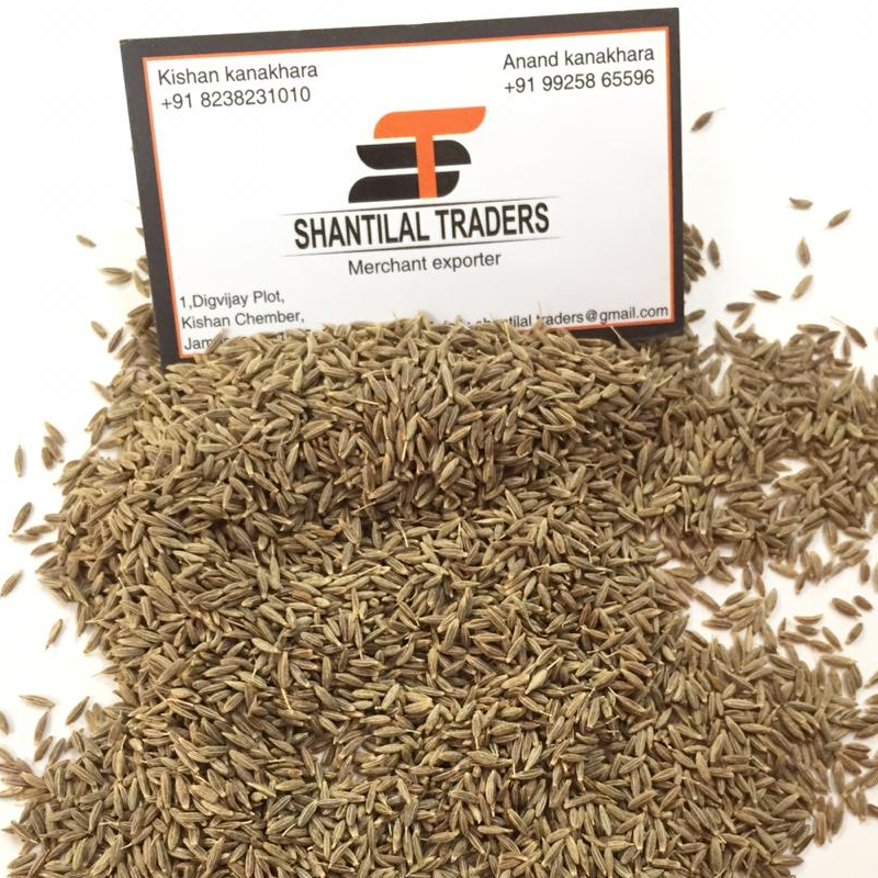 99% purity Singapore Cumin seeds Jeera