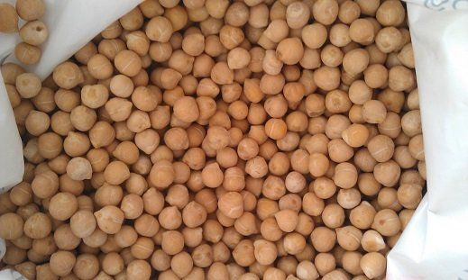 Organic chickpeas for wholesale