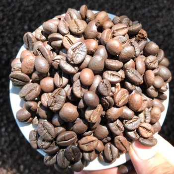 BEST QUALITY OF ROASTED WHOLE COFFEE BEANS CHEAP PRICE (ARABICA/ ROBUSTA) +84765149122