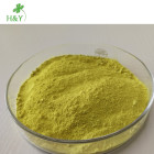 Hot Selling Sophora Japonica Extract Quercetin 98%