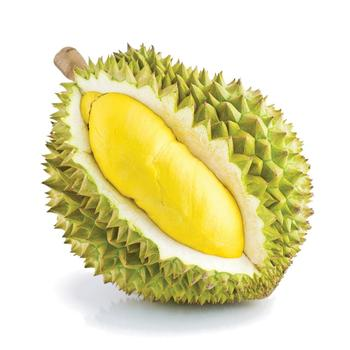FRESH DURIAN MON THONG/MUSANG KING IN BULK AVAILABLE