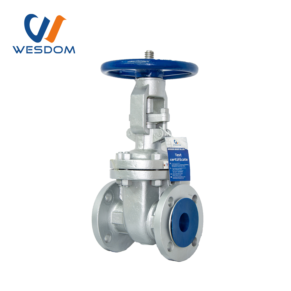 ANSI FLANGE TYPE CAST STEEL GATE VALVE