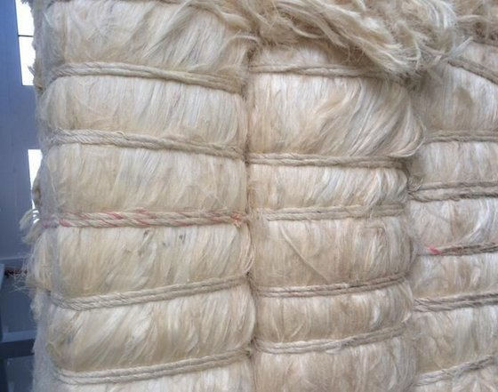 100% Natural sisal fiber/ UG Grade White Sisal Fiber For Sale