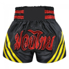 Customized Dry Fit Satin fabric boxing fight shorts wholesale