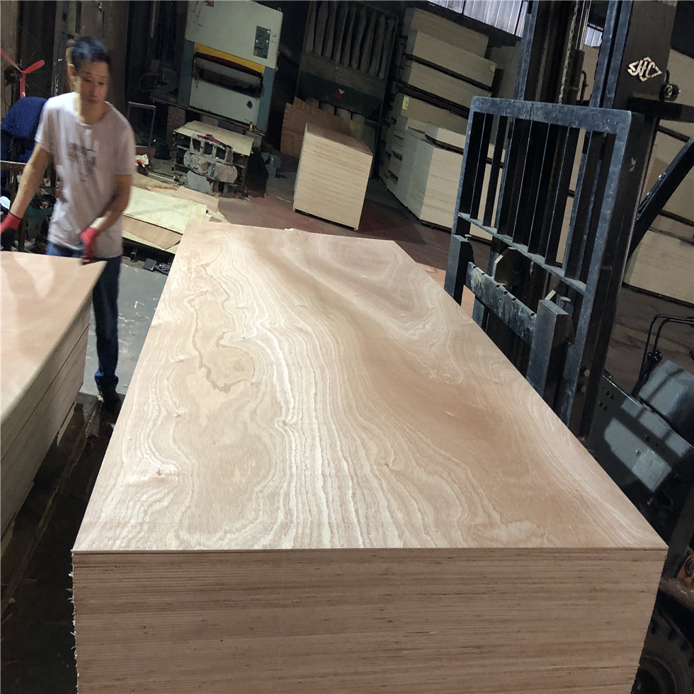 poplar core 18mm sapele plywood E1glue