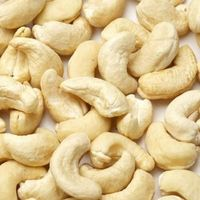 Fresh Vietnamese cashew nuts/Quality Cashew Nuts for Industrial Goods (S and B grades)