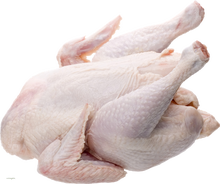 Halal <span class=keywords><strong>Gefrorene</strong></span> Ganze Huhn